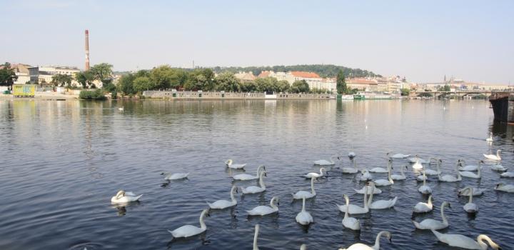 Luxusní byt k prodeji Praha 4 - 96m
