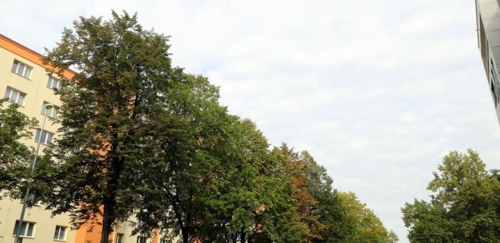 Obchodní prostor k prodeji Praha