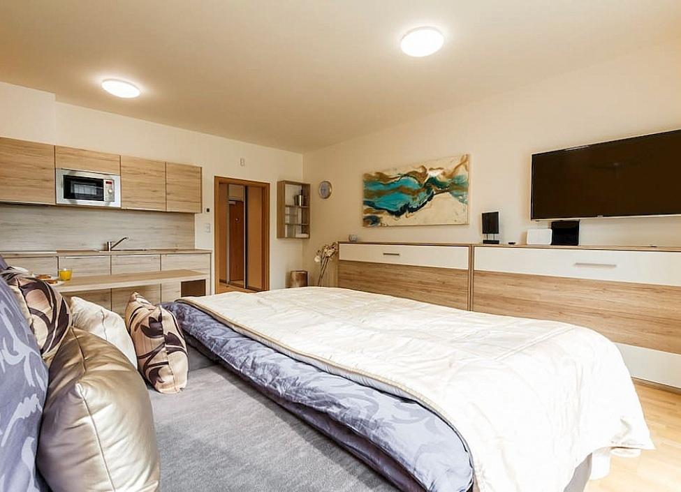 Luxusní byt s terasou Praha 3 1