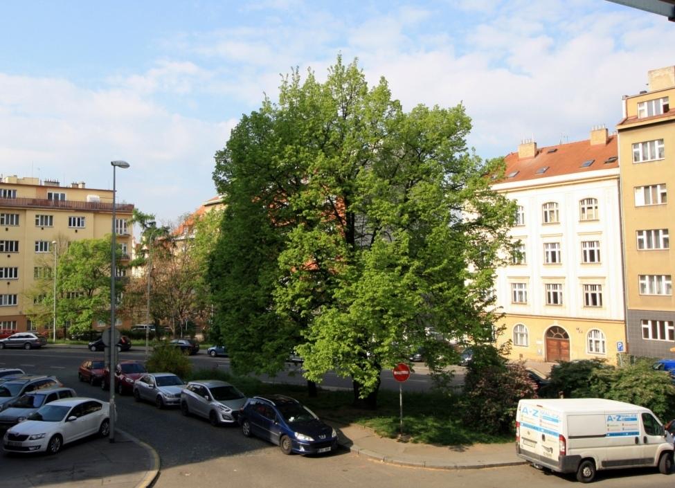 Luxury apartment Podolí 108m 1