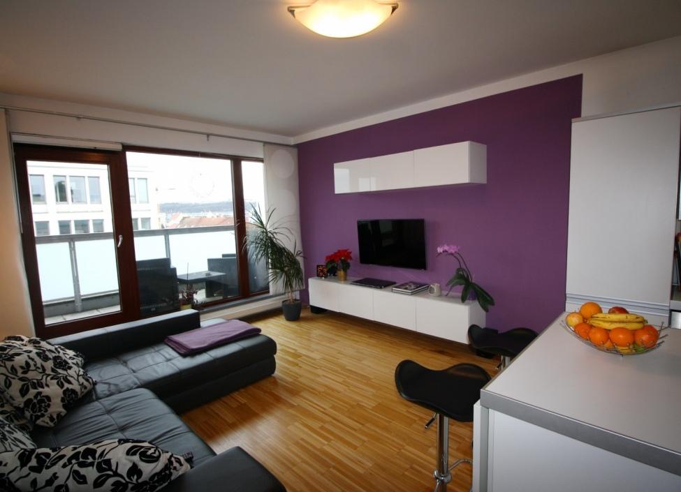 Luxusní byt v Karlíně 1