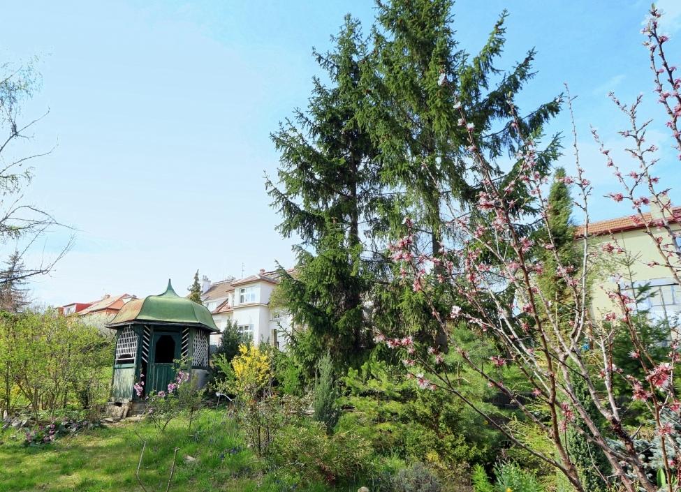 Rodinný dům se zahradou na prodej 462m 1