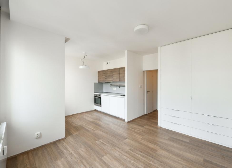Byt na pronájem - Praha 3 - Vinohrady - 30m 1
